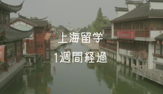 上海留学生活 1週間のまとめ